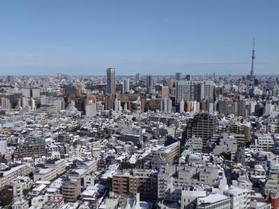 2014-02-09-skytree.jpg