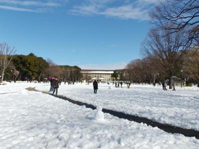 2014-02-09-ueno.jpg