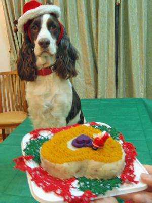 トッピーの誕生日ケーキ