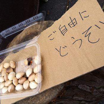 2012.12.ひょうたん農園さん2