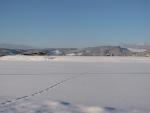 0105white view
