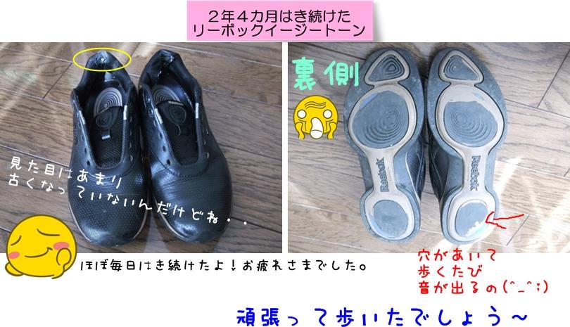 5cats_20130125121520.jpg