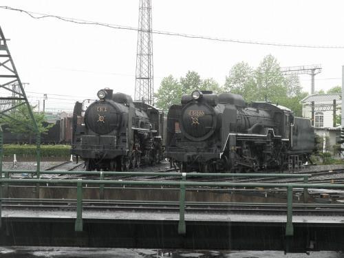 P5029310.jpg