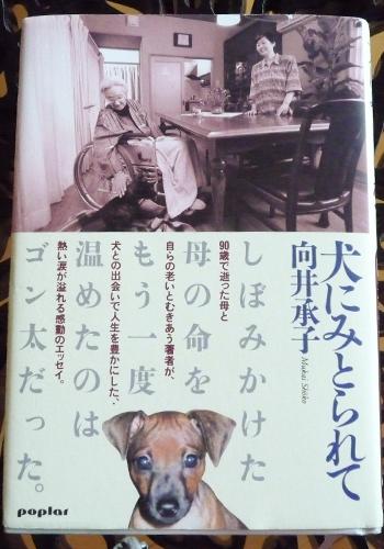 太郎物語P1020296