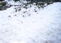雪が凍りに