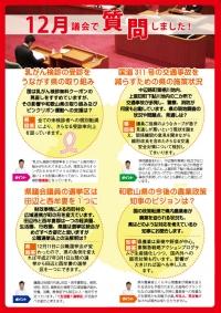 谷口和樹の情熱宣言「議会だより第8号(2014年新春)」裏面