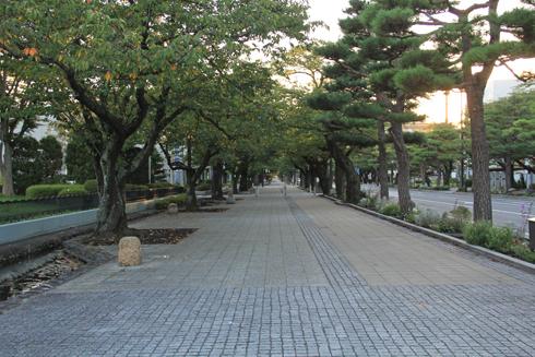 十和田市現代美術館-17
