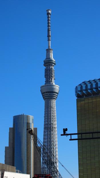 都庁2012-9