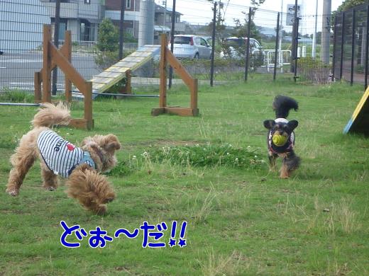 zgoUOCU3gG7uGi9-15.jpg