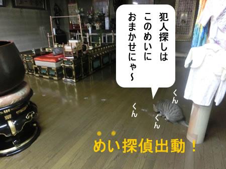 2014-12_21_04.jpg