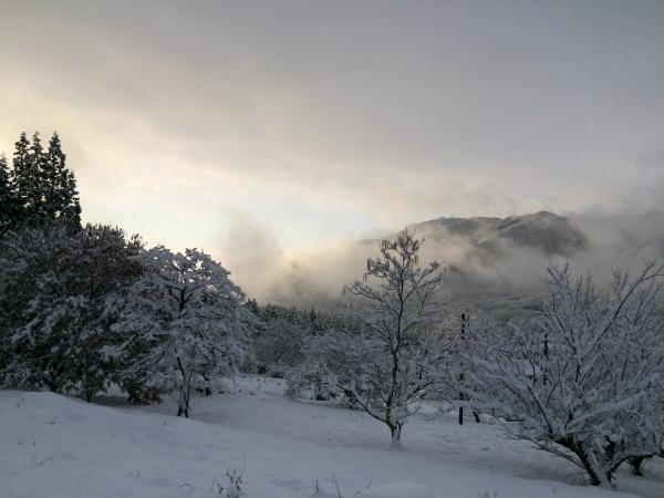 141215-雪の加子母 (1)