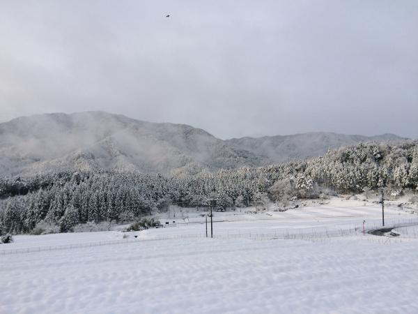 141215-雪の加子母 (3)