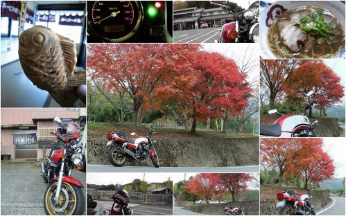20121110 photo