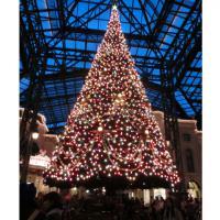 ディズニーランド クリスマス 2 2012