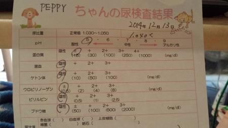 20141215_154356.jpg