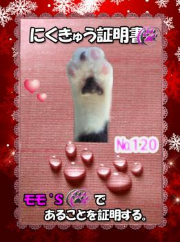 fc2blog_20121114172316732.jpg