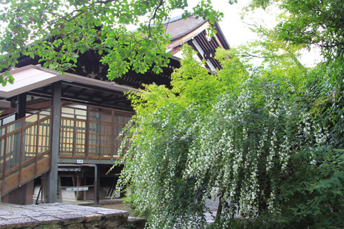 daihoonzi09141.jpg