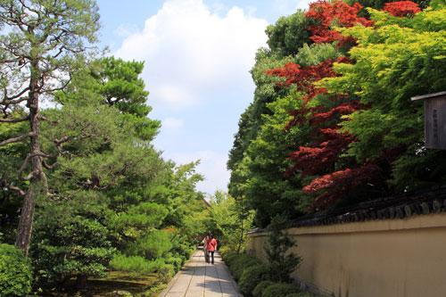 daitoku071411.jpg