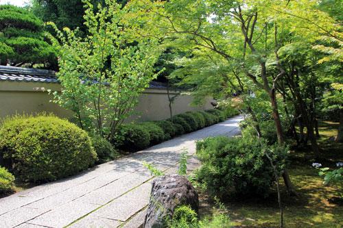 daitoku071412.jpg