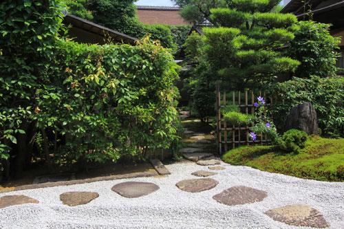 daitoku07146.jpg