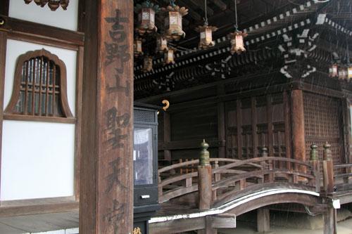 sakurahonbo05011.jpg