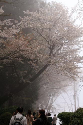 takagiyama04244.jpg