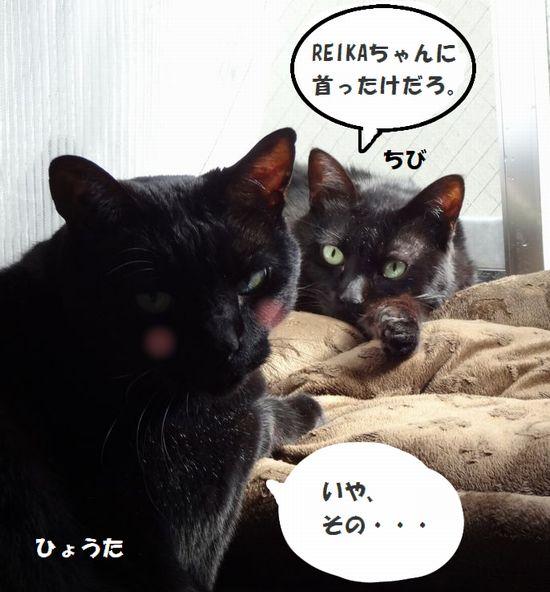 kubittake.jpg