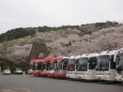 IMG_4987homebridgebus.jpg