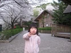 s-IMG_4975sakura-v.jpg