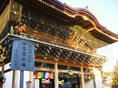 25-01-02成田新勝寺 (3)