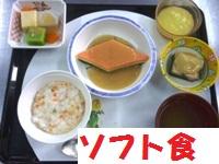 1303ひな(ソフト)