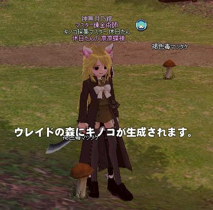 mabinogi_2013_02_13_017.jpg