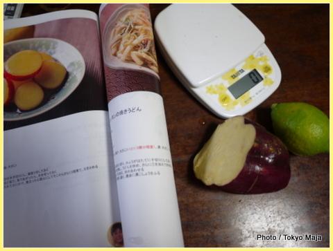 20121113瀬戸内広島レモンを使った料理-002