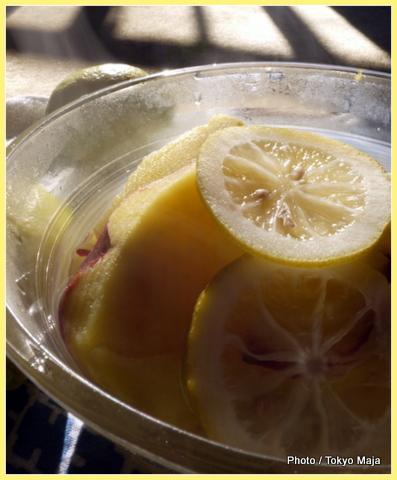 20121113瀬戸内 広島レモンを使った料理-008