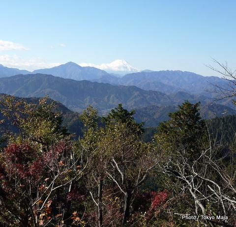 20121118紅葉の高尾山~小仏城山-005