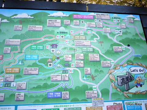 20121118紅葉の高尾山~小仏城山-002