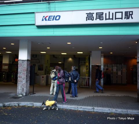 20121118紅葉の高尾山~小仏城山-001