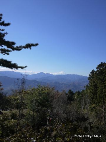 20121118紅葉の高尾山~小仏城山-015