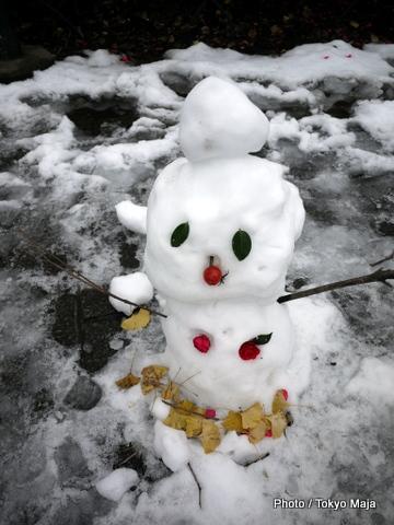 新宿御苑雪景色
