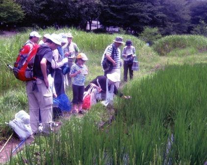 野川第一調節池