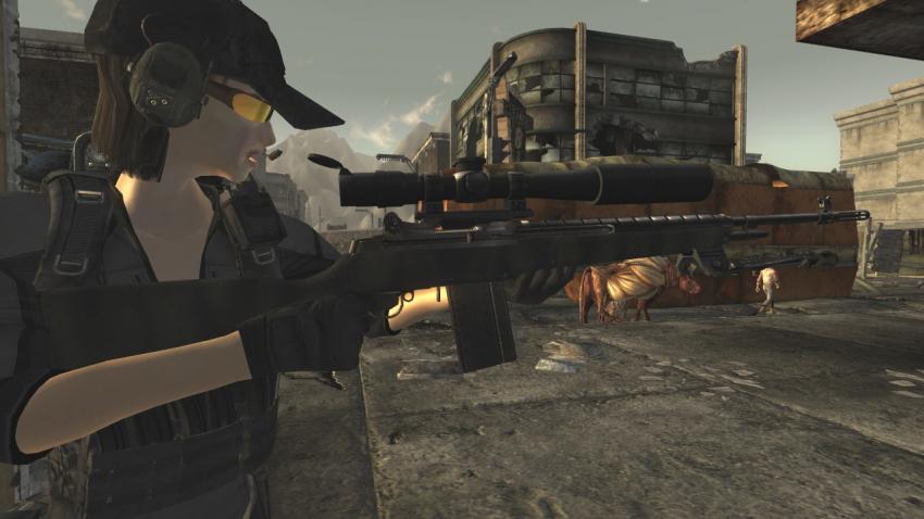 Fallout1099.jpg