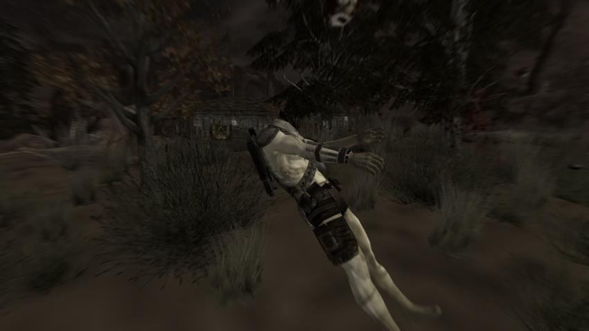 Fallout1472.jpg