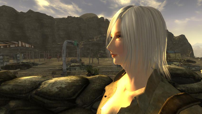 Fallout464.jpg