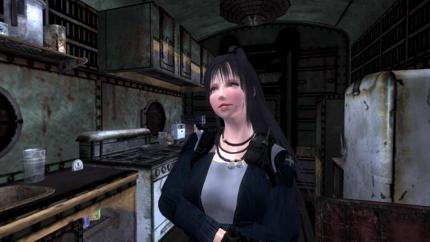 Fallout485.jpg