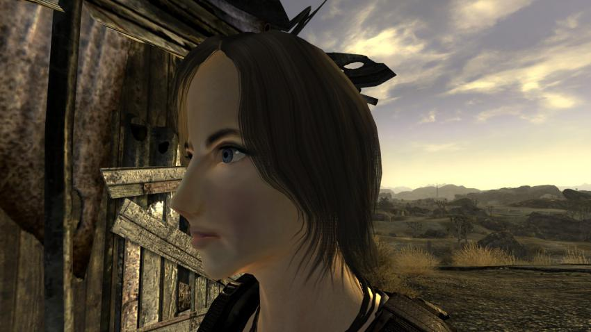 Fallout663.jpg