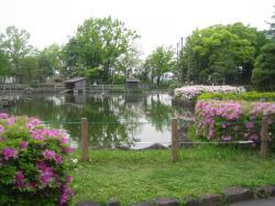東京の自然①
