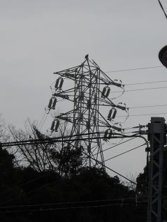 京急瀬戸線6号