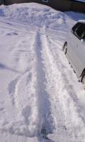 今朝の積雪