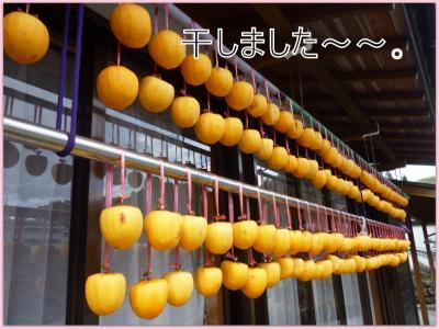 hosigaki4.jpg