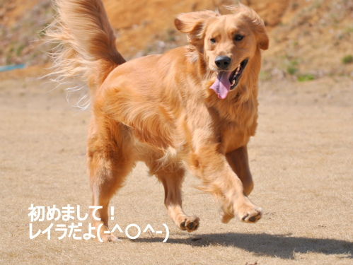 れSC_0052